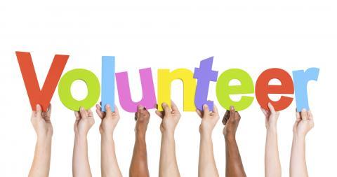 Dėl savanoriavimo LLB stende Vilniuje liepos 1 dieną, sekmadienį